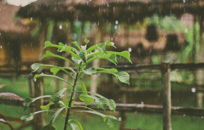 agua de lluvia